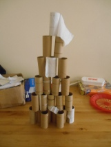 We've used a lot of toilet paper!